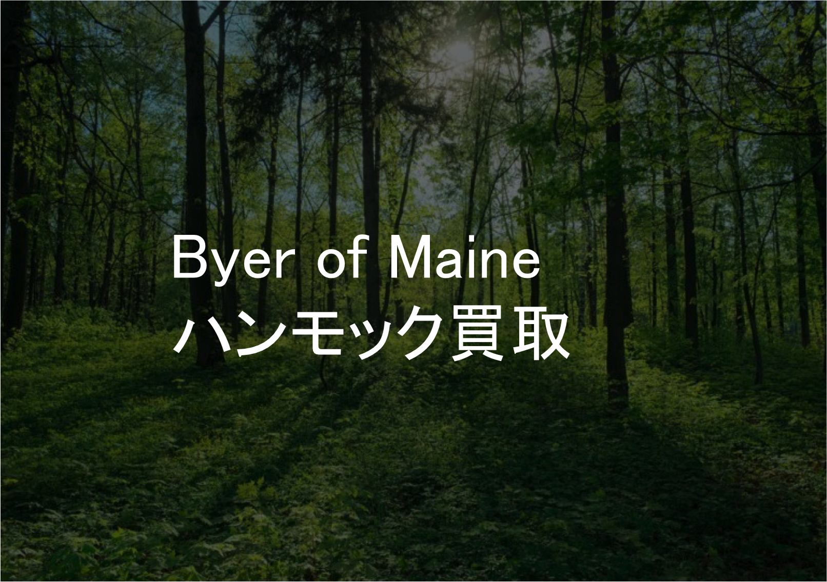 Byer of Maineハンモック買取なら
